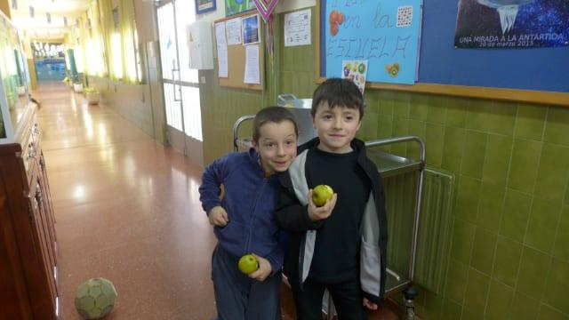 fruta32